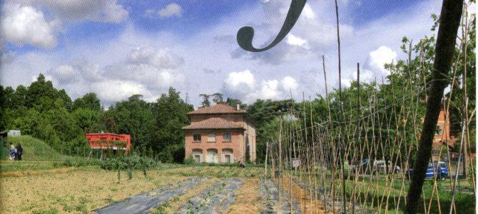 Il CEIS sulla rivista Effeta della Fondazione Gualandi di Bologna